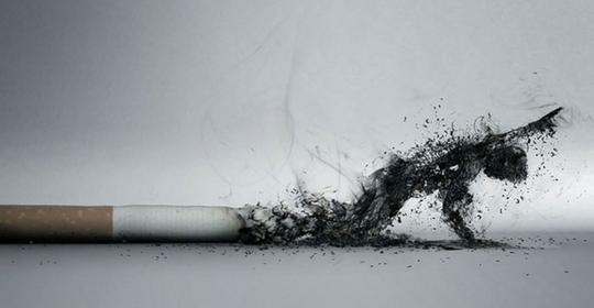 Cazzo duro se smetti di fumare